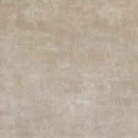 Icon Taupe Back